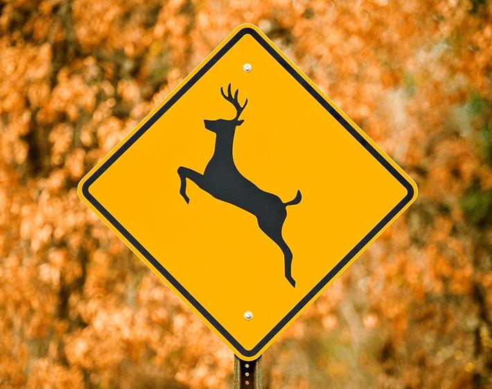 """deer crossing"" sign"