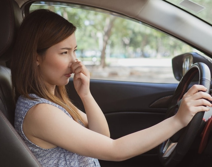 Follow Your Nose! 6 Car Smells You Should Sniff Out